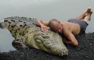 crocodile friend