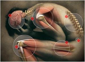 pain in fibro