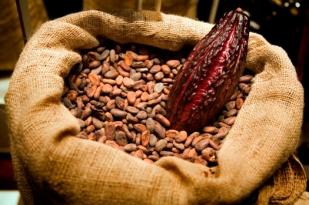 kakao-%cf%84%cf%83%ce%bf%cf%85%ce%b2%ce%b1%ce%bb%ce%b9