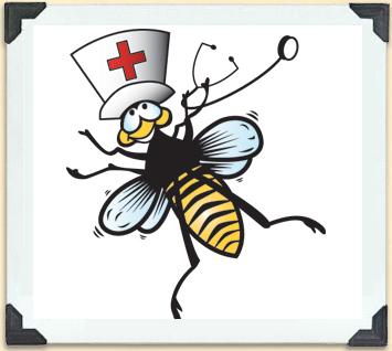 nurcing bee