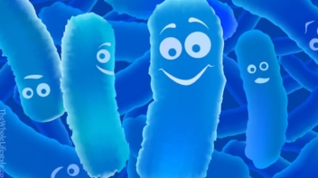 good bacteria.jpg