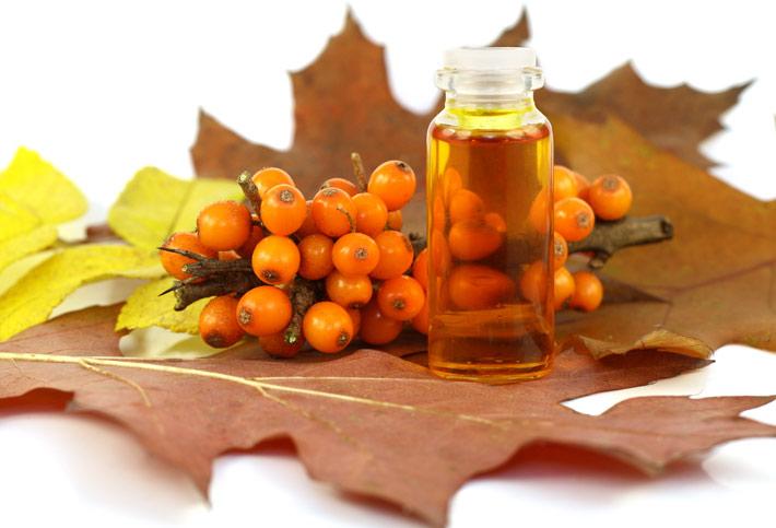 hippoph oil